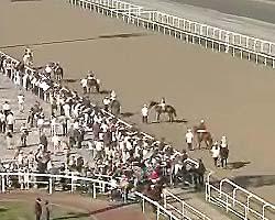 Международный конно-спортивный комплекс